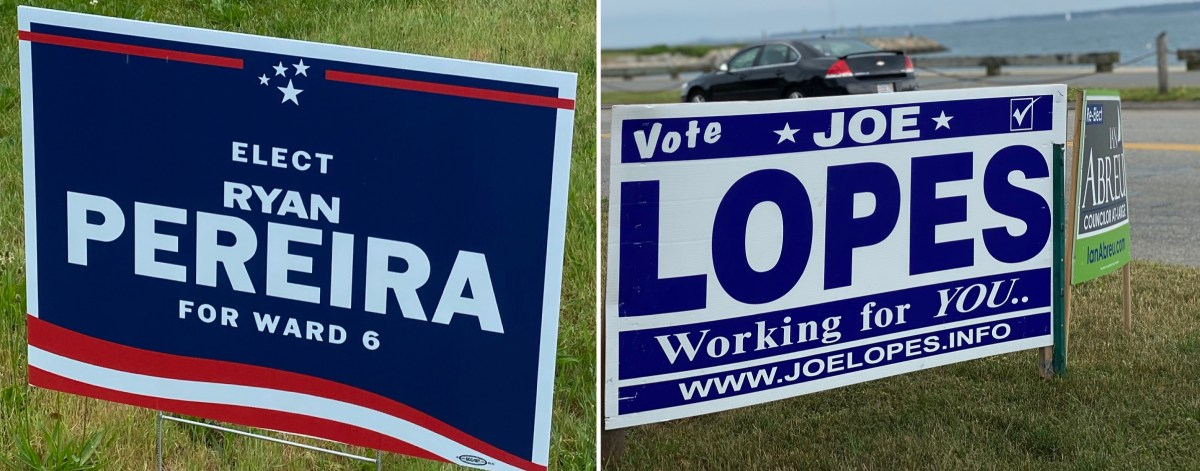 Political lawn signs.