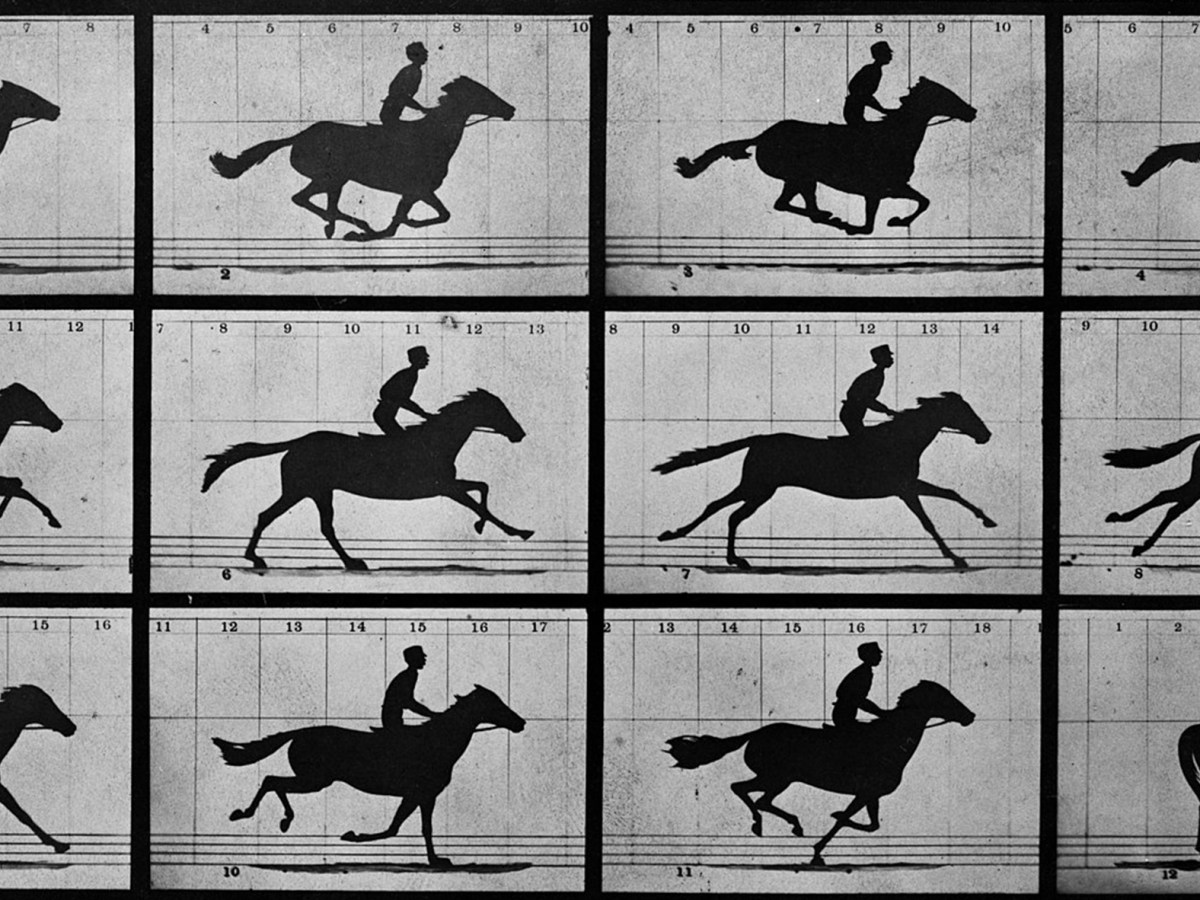 """The Horse in Motion,"" Edweard Muybridge."